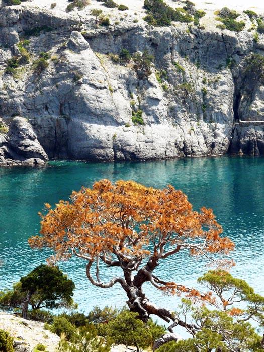 "photo ""Paradise"" tags: landscape, travel,"