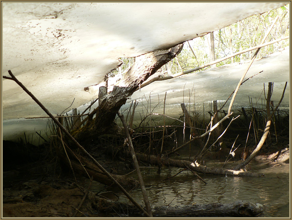 """photo """"secluded little world ( under ice - 2 )"""" tags: landscape, summer, water"""