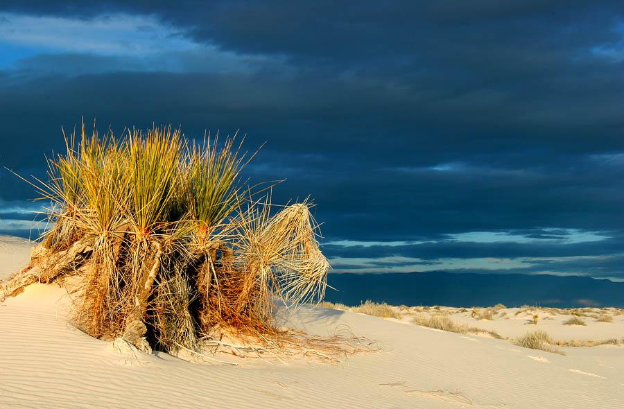 "photo ""Yellow sun of a desert"" tags: landscape, travel, sunset"