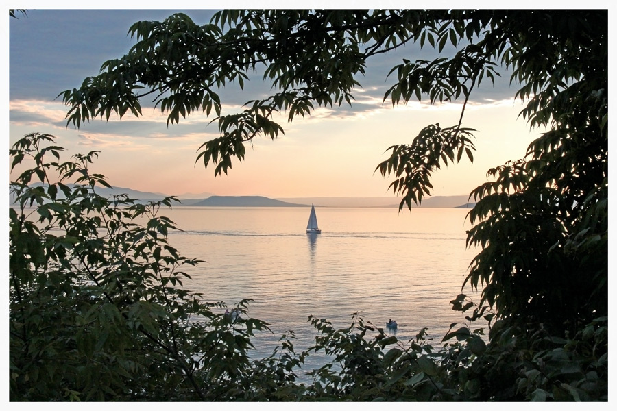 """photo """"***"""" tags: landscape, summer, water"""