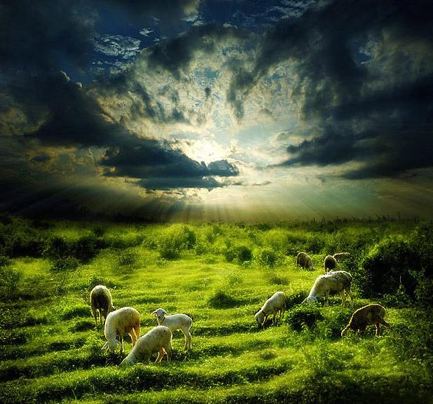 "photo ""Fairy Tale"" tags: landscape,"