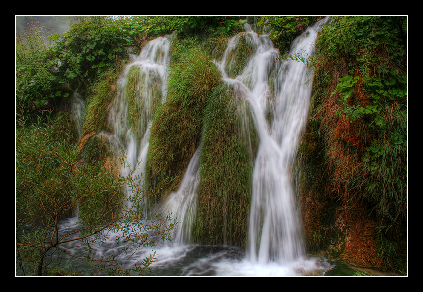 "фото ""Трава и вода"" метки: пейзаж,"
