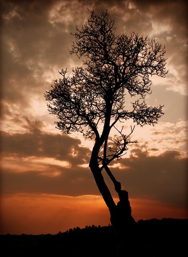 "photo ""Solitude..."" tags: landscape,"