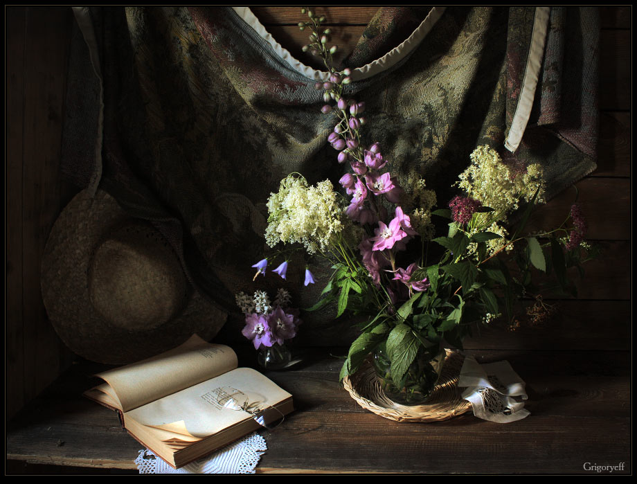 "photo ""Still life with flower delphinium"" tags: still life,"