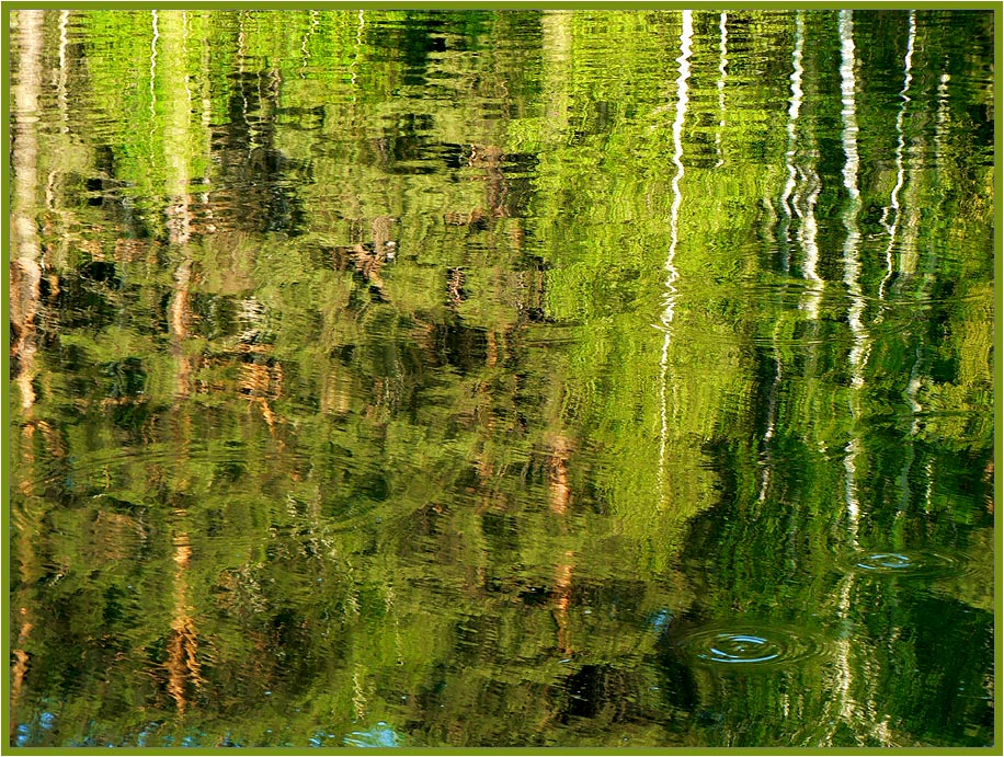 "photo ""the reflections"" tags: landscape, abstract, water"