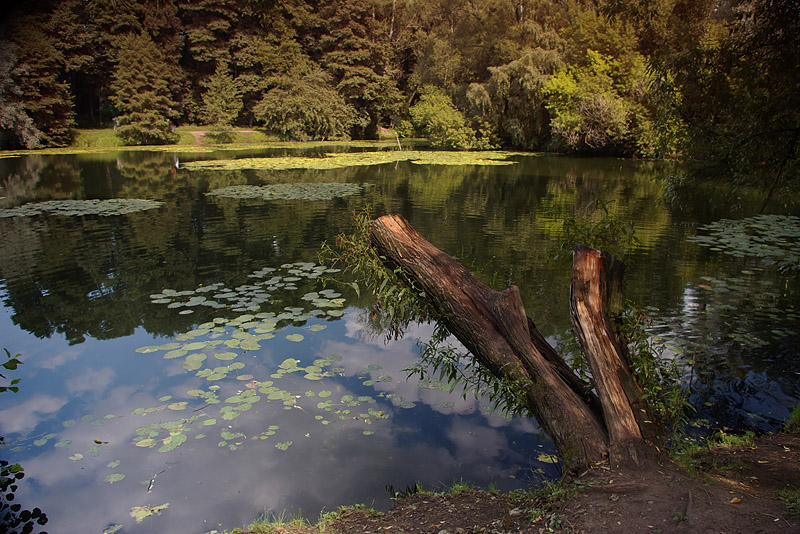 "photo ""***"" tags: landscape, summer, water"