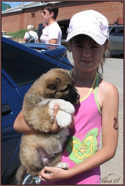 """фото """"Девочка со щенком."""" метки: жанр,"""