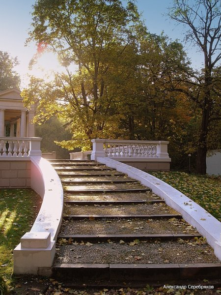 "photo ""осень,природа,архитектура,лестница,солнце,лучи,деревья,листопад,ступеньки"" tags: landscape, autumn"