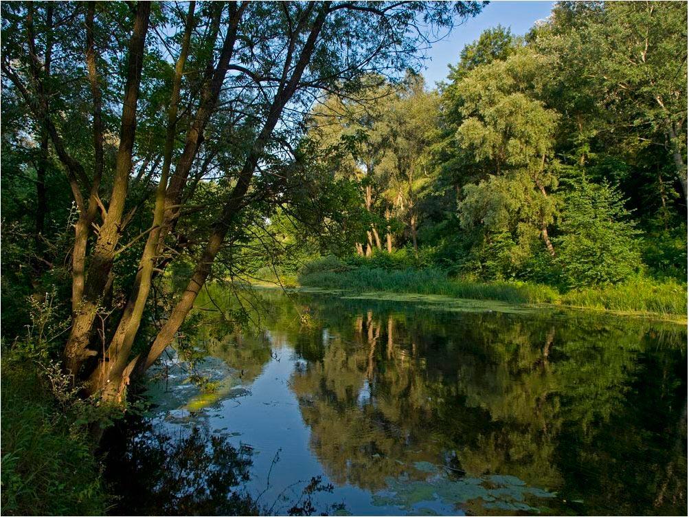"""фото """"Июльский вечер"""" метки: пейзаж, вода, лето"""