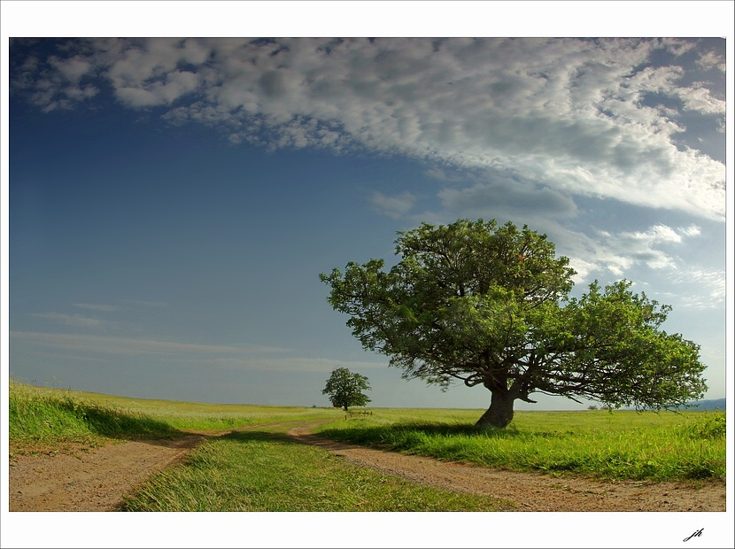 "photo ""two on the way"" tags: landscape, summer"