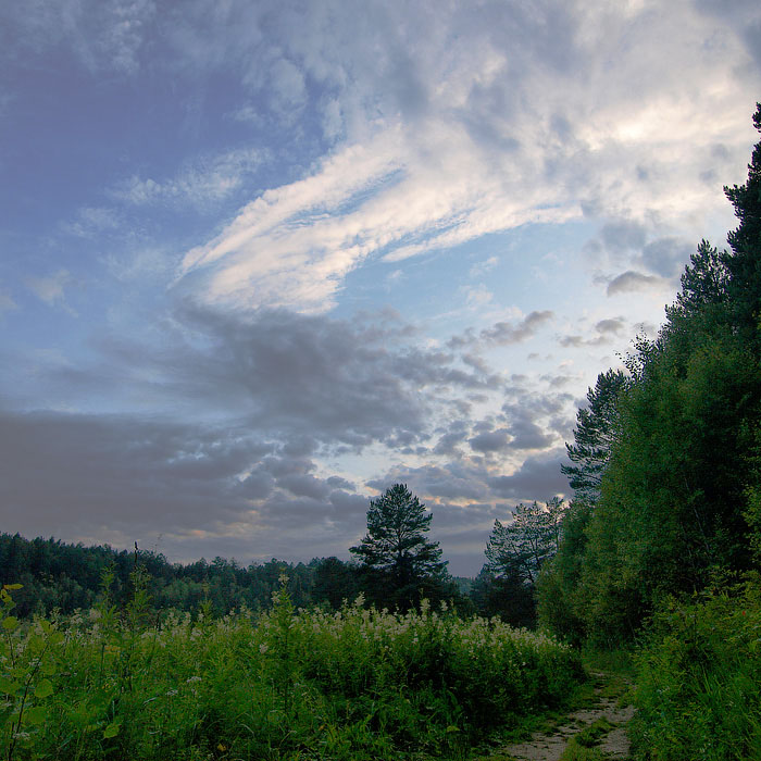 "photo ""Landscape in evening"" tags: landscape, clouds, forest"