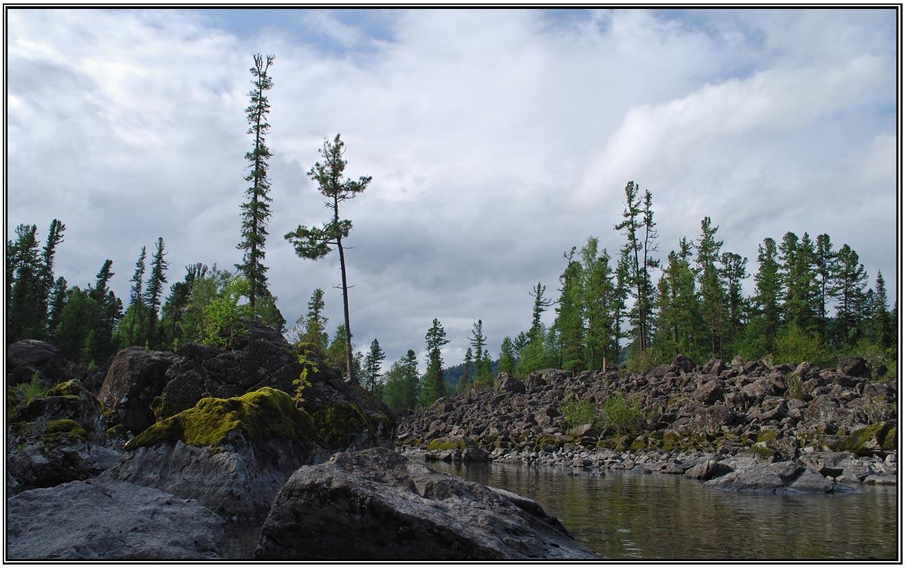 """фото """"Таежная"""" метки: пейзаж, лес"""