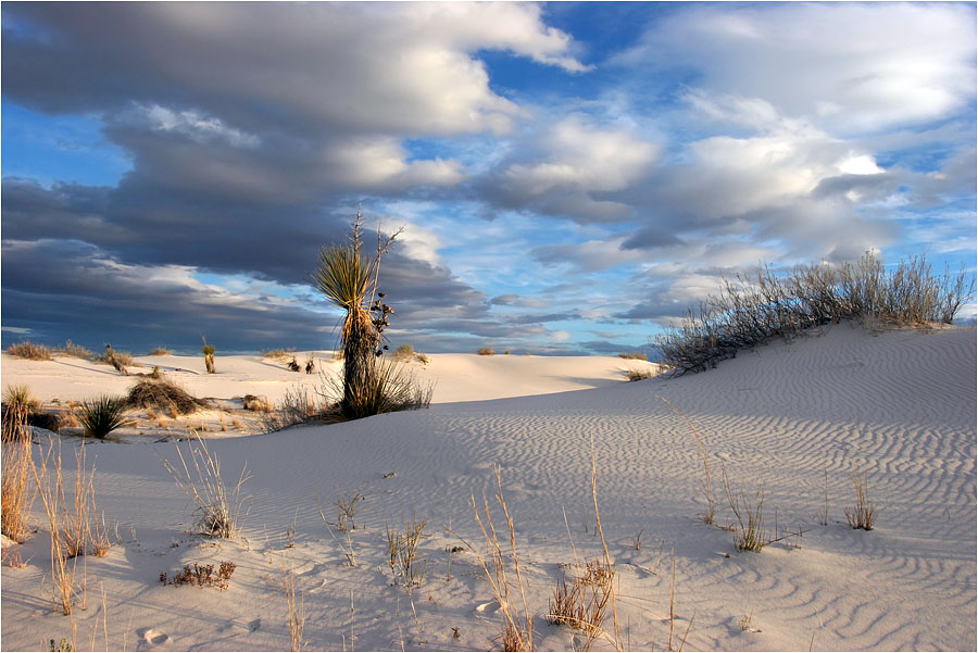 "photo ""White Sands. Almost sunset."" tags: landscape, travel, sunset"