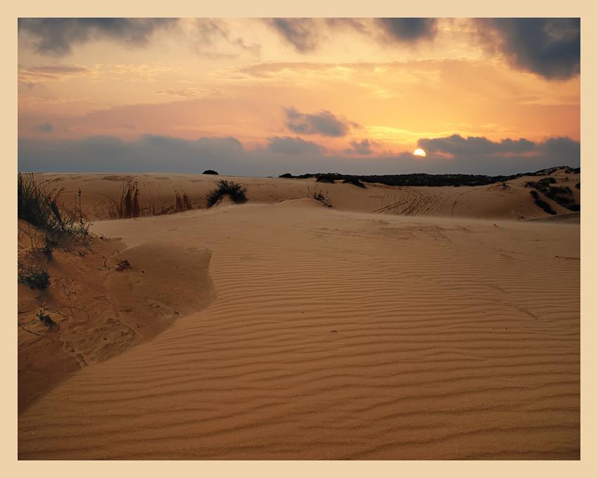 """фото """"Вечер в песчаной дюне"""" метки: пейзаж, путешествия, закат"""