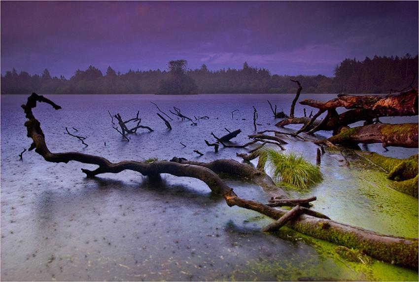 """photo """"Disturbed Landscape"""" tags: landscape,"""