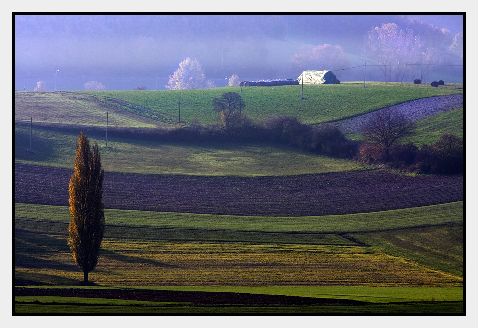 "photo ""Fields"" tags: landscape,"