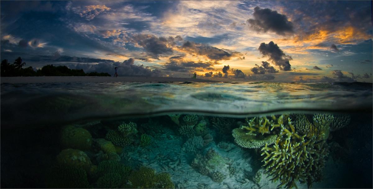 """фото """"Закат глазами дельфина"""" метки: пейзаж, закат"""