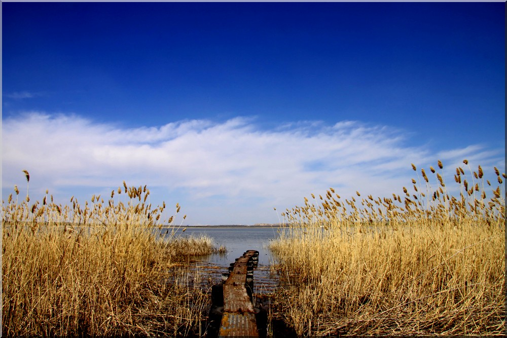 """photo """"***"""" tags: landscape, spring, water"""