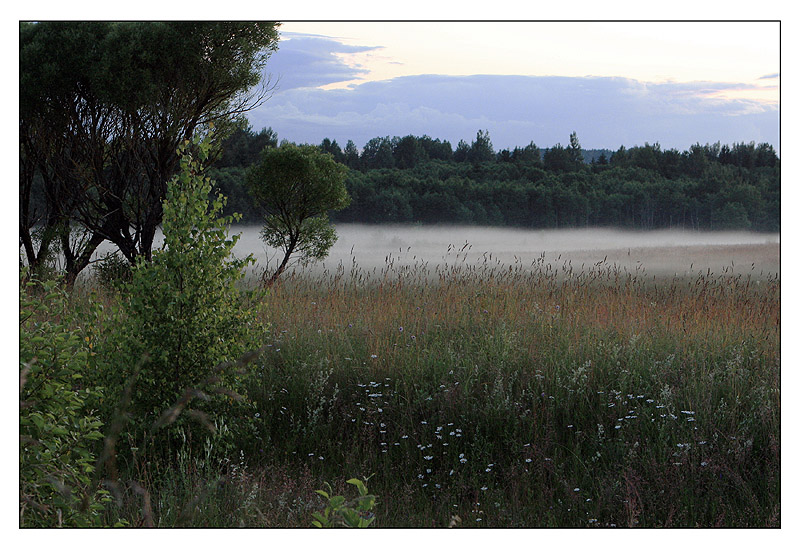 "фото ""Седая пелена..."" метки: пейзаж, лето"