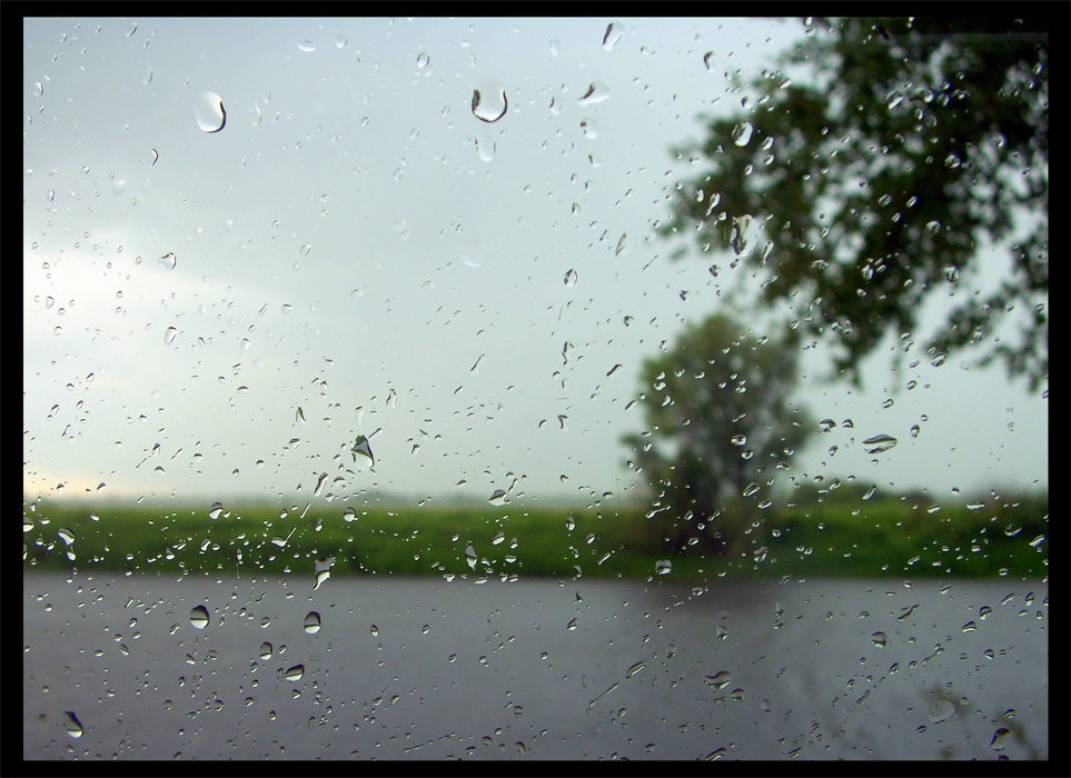 "photo ""Wet picture"" tags: landscape, summer"