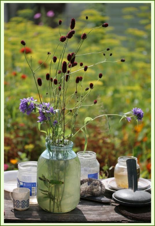 "photo ""Метаморфозы августа. Другая жизнь вещей"" tags: nature, flowers"