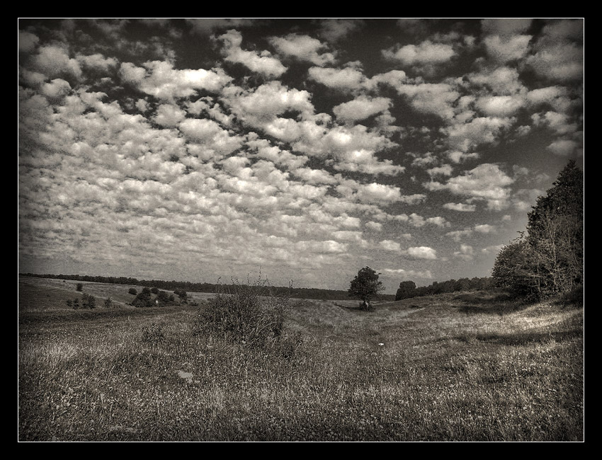 "photo ""BW field"" tags: landscape, clouds, summer"
