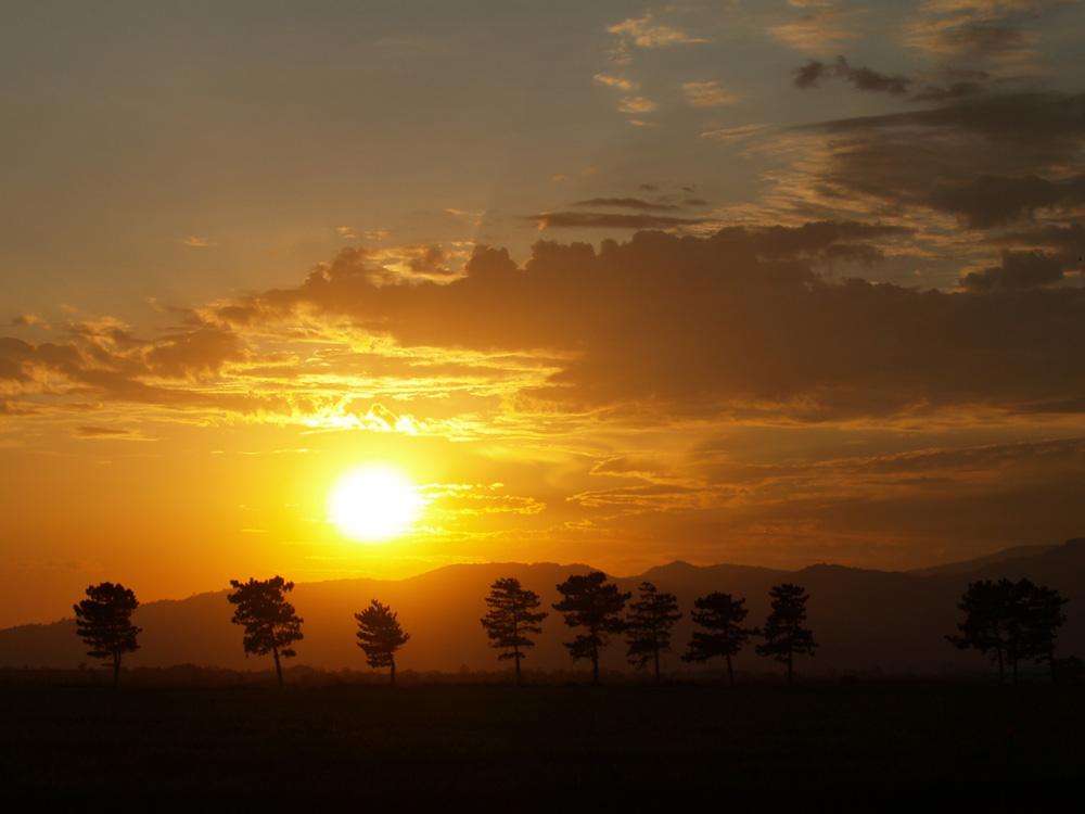 "фото ""Treeline-Sunset"" метки: пейзаж, путешествия, Северная Америка, закат"