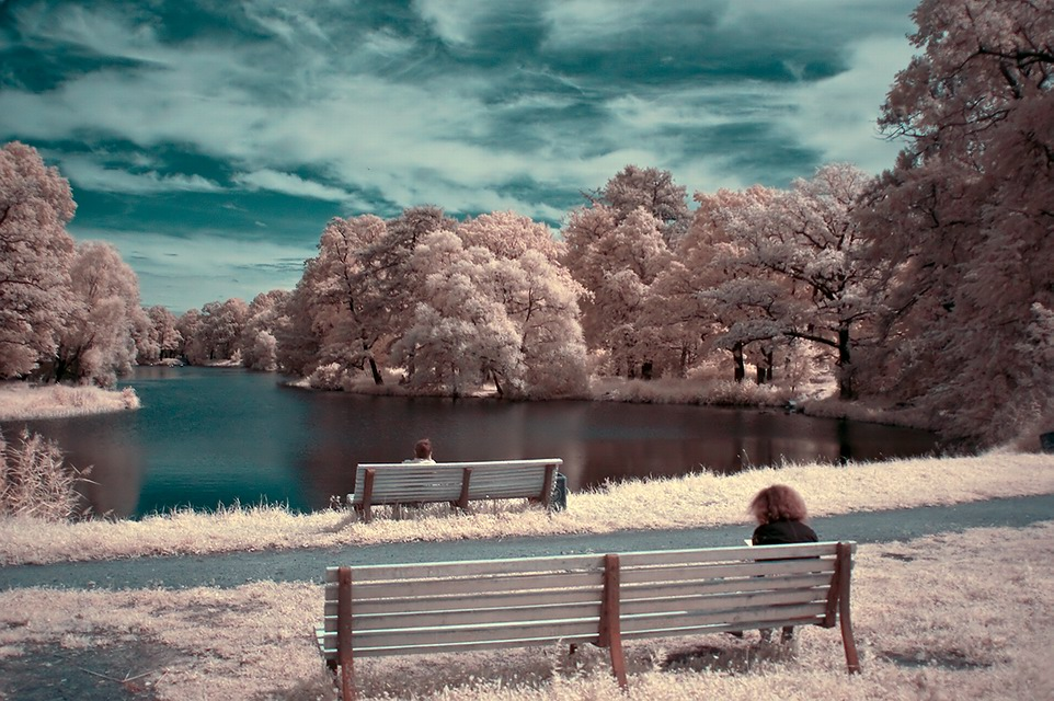 "photo ""INFRARED S.Petersburg"" tags: landscape,"