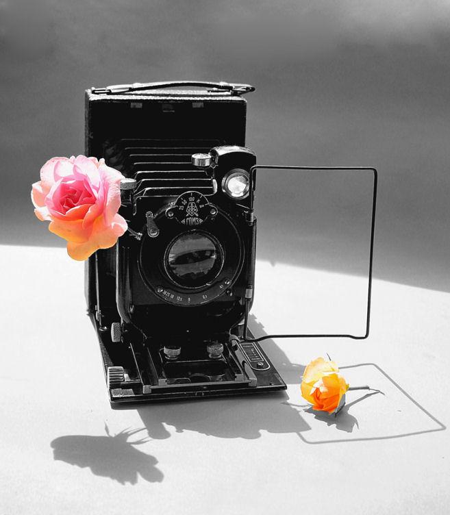 "photo ""still-photo-life"" tags: montage, still life,"