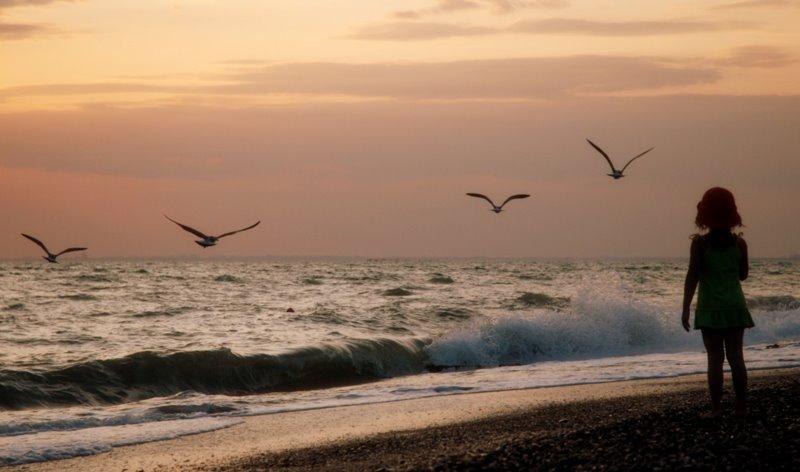 """фото """"like a bird"""" метки: пейзаж,"""