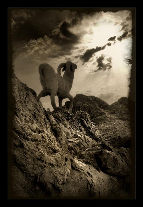 """фото """"На склонах Чебики"""" метки: пейзаж, путешествия, Африка, горы"""