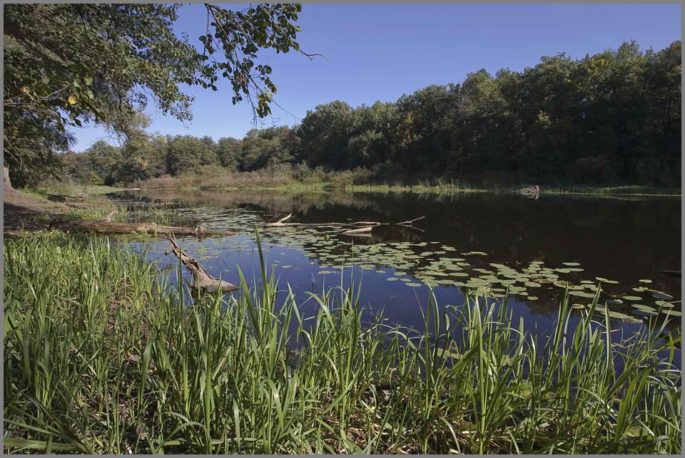 """фото """"У озера..."""" метки: ,"""
