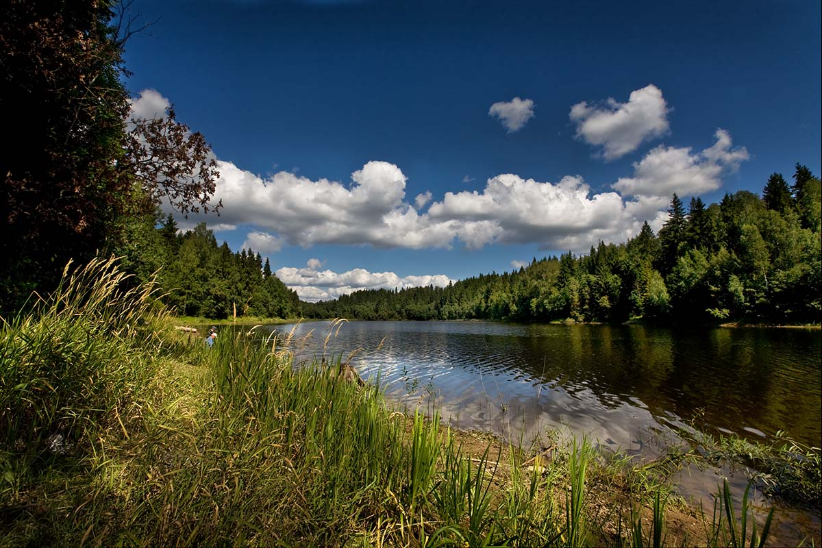 "photo ""Forest lake at midday."" tags: landscape, summer"