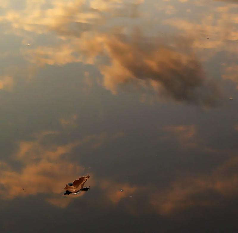 """фото """"""""Летучий Голландец"""""""" метки: пейзаж, закат, облака"""