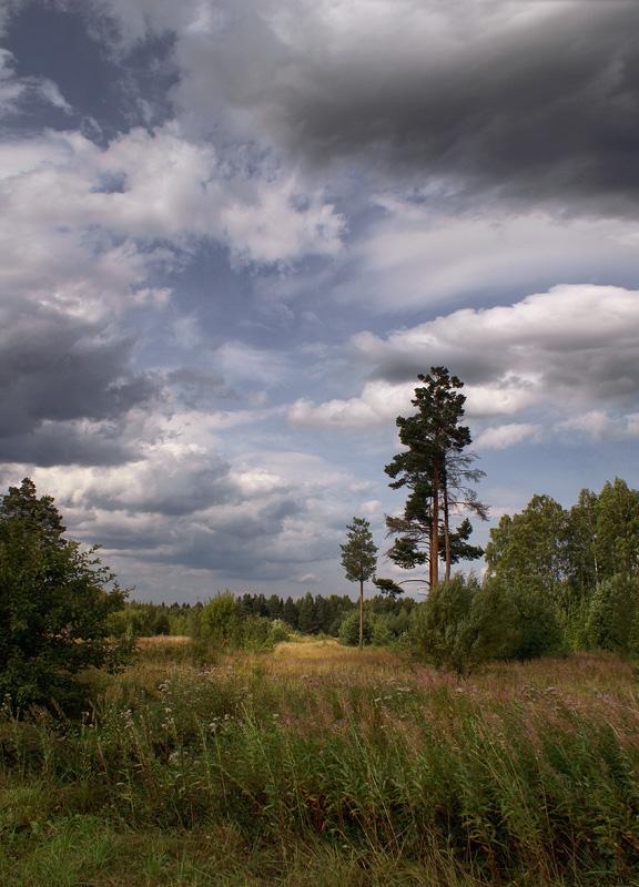 """фото """"Август."""" метки: пейзаж, лето"""