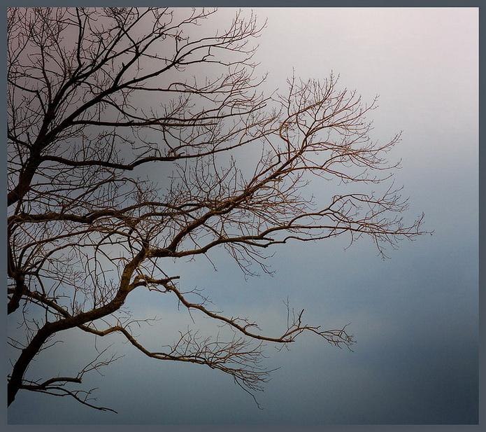 "фото ""Ожидание"" метки: пейзаж,"