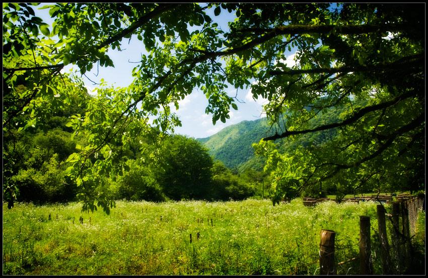 "фото ""Горная пасека"" метки: пейзаж, путешествия,"