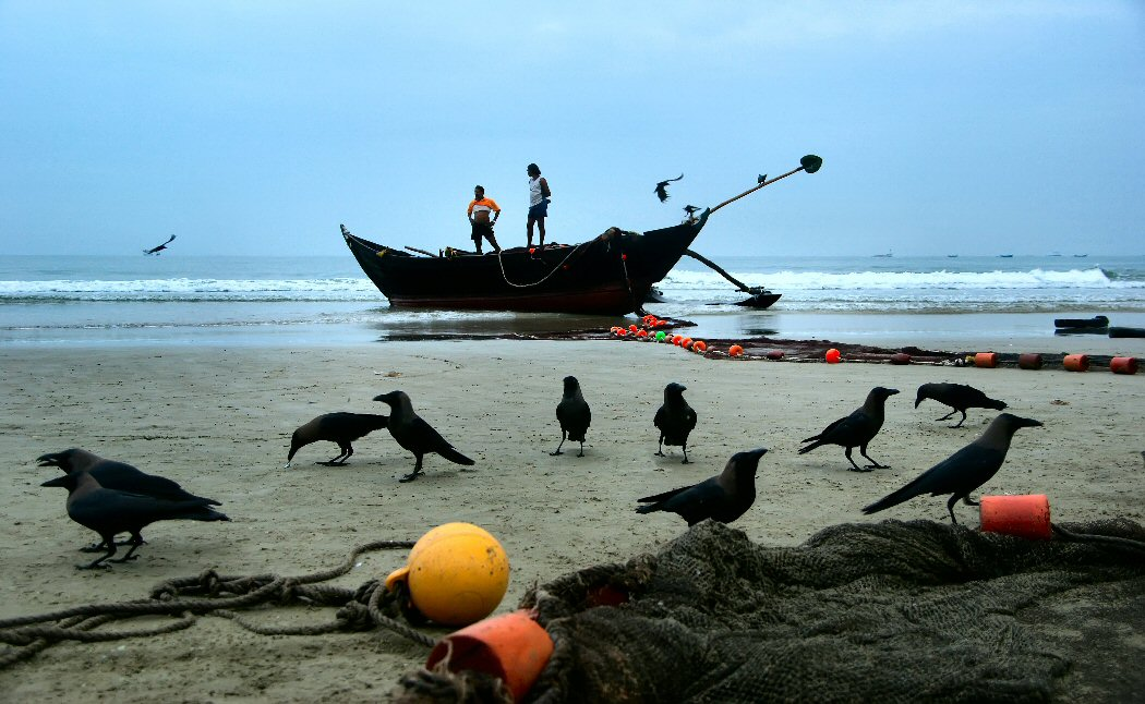 "photo ""Crow breakfast"" tags: reporting, travel, Asia"