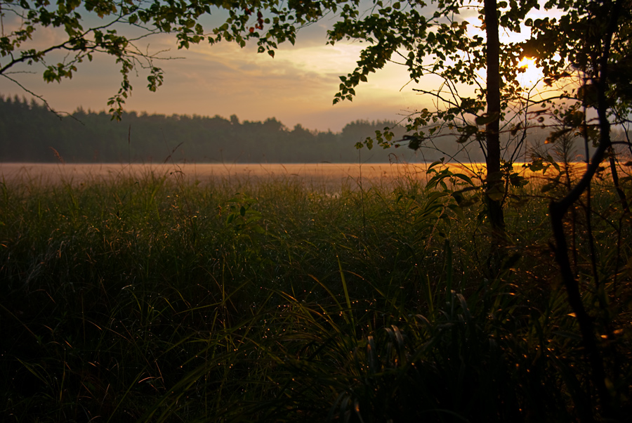 "photo ""The sacrament of morning"" tags: landscape, summer, sunset"