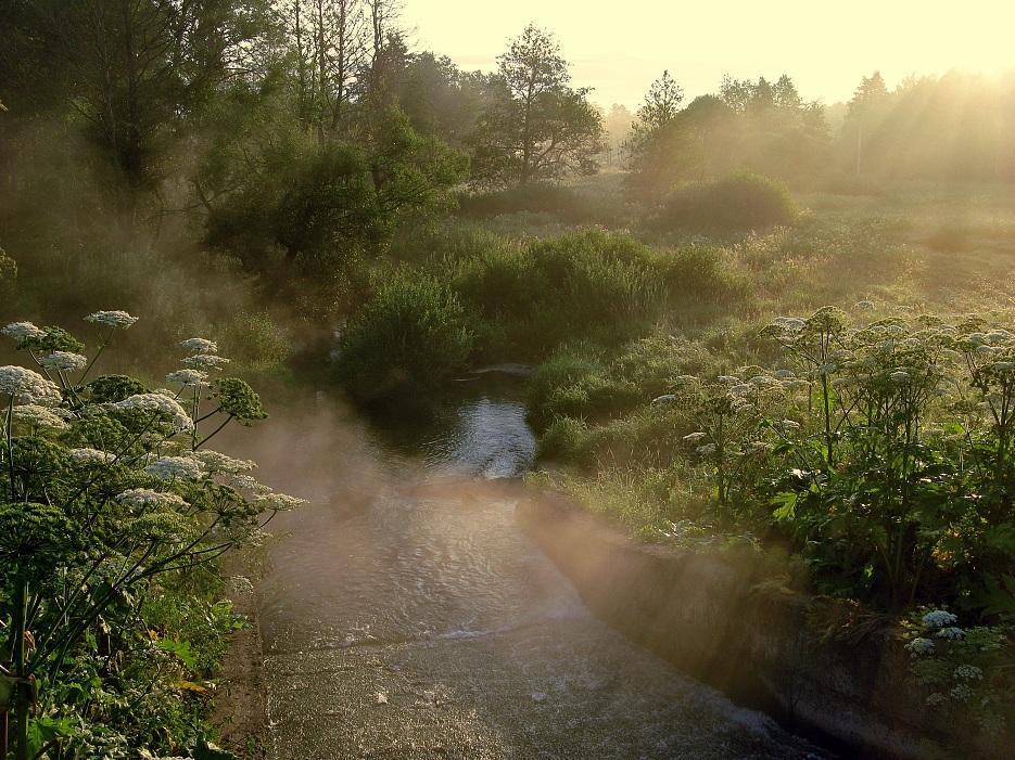 """фото """"Про утренний туман"""" метки: пейзаж, закат, лето"""