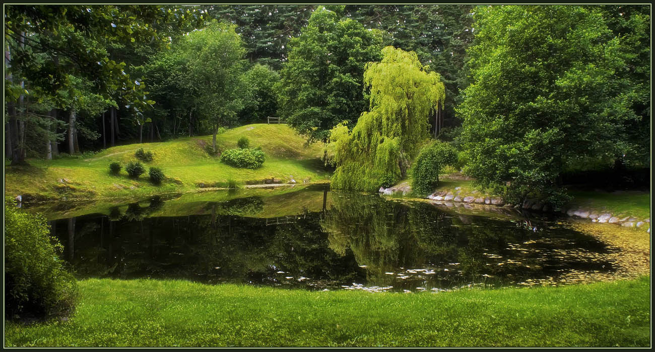 "photo ""The silence of the green world"" tags: landscape, summer"