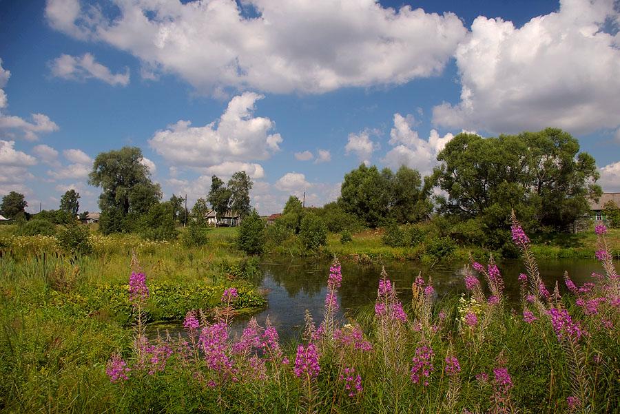 "фото ""Пруд в Бяково."" метки: пейзаж, вода, лето"
