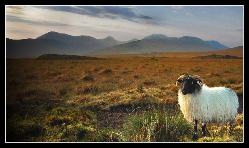 """photo """"===="""" tags: landscape,"""