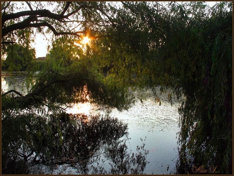 "photo ""***"" tags: landscape, evening, summer"
