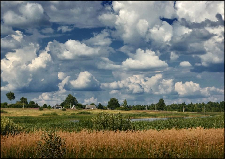 "photo ""Tender summer"" tags: landscape, summer"