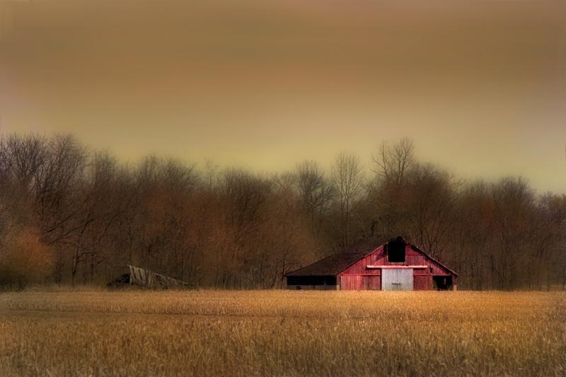 """фото """"Amber Waves of Grain"""" метки: пейзаж, лето"""