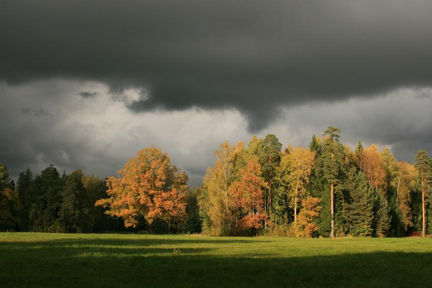 """фото """"Осень в наступлении"""" метки: пейзаж, осень"""
