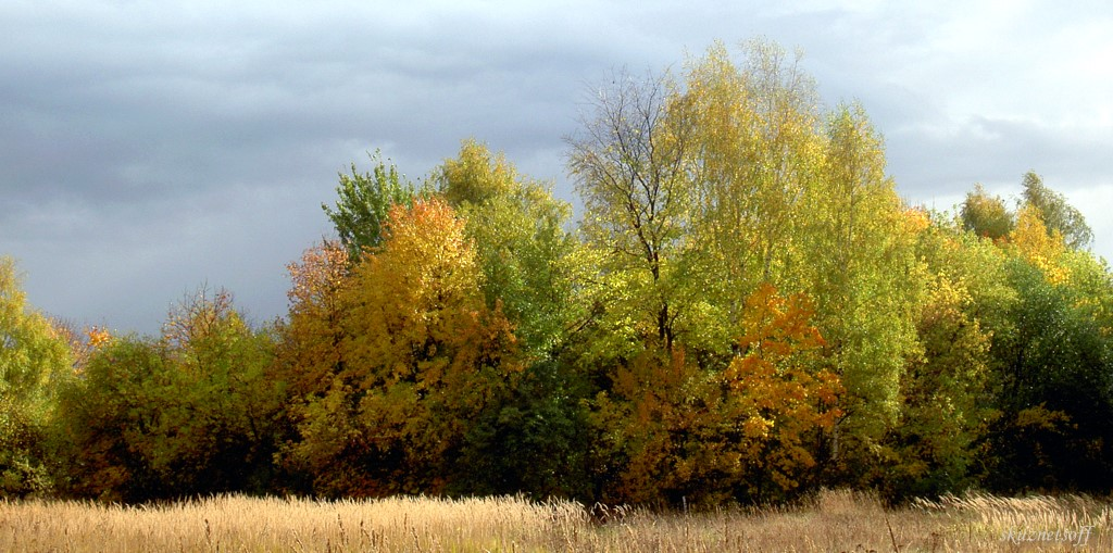 "фото ""Акварель"" метки: пейзаж, осень"