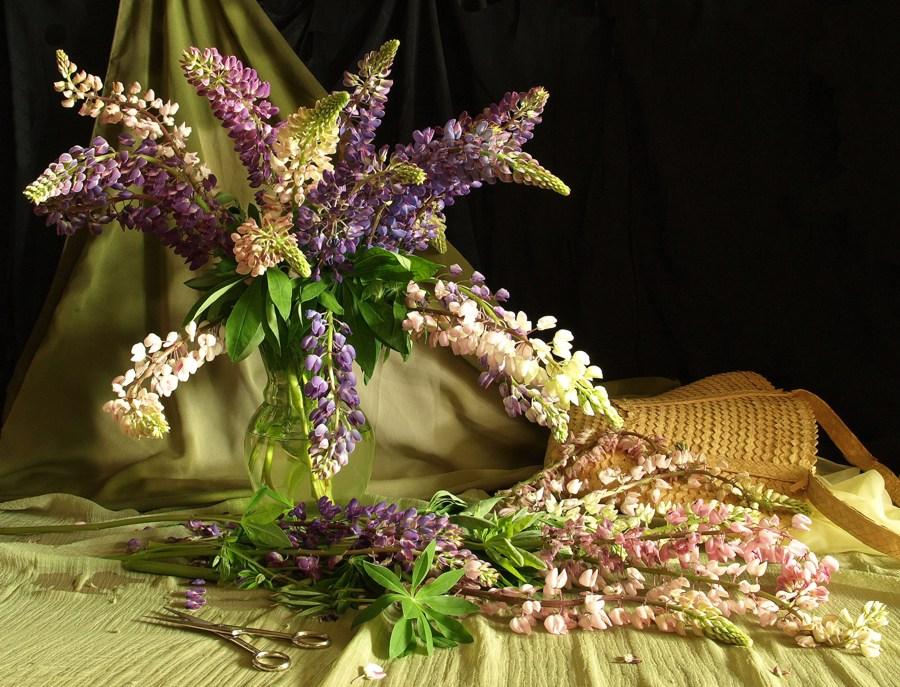 "фото ""Цветы из сада."" метки: натюрморт,"