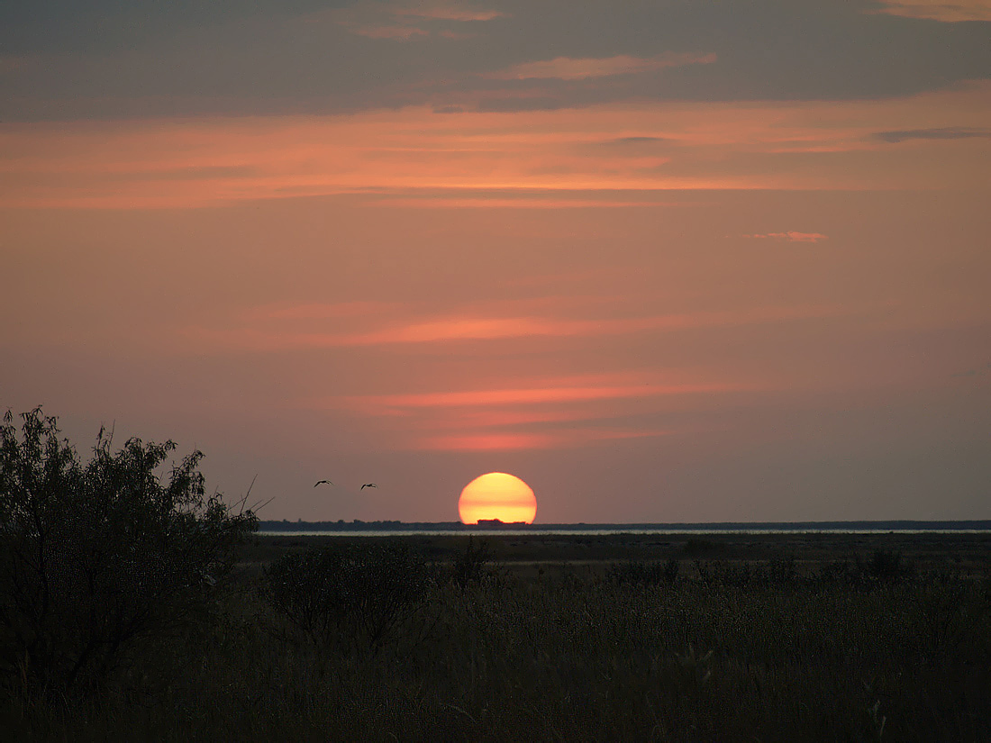 """фото """"За солнцем"""" метки: пейзаж, закат"""